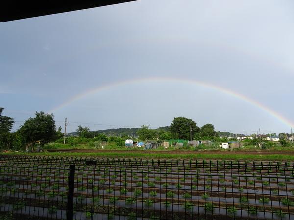 虹がかかりました♪